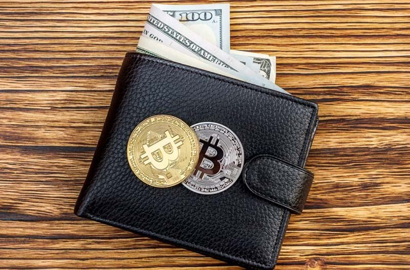 Custodial or Exchange Wallet for Your Coins—What To Choose?