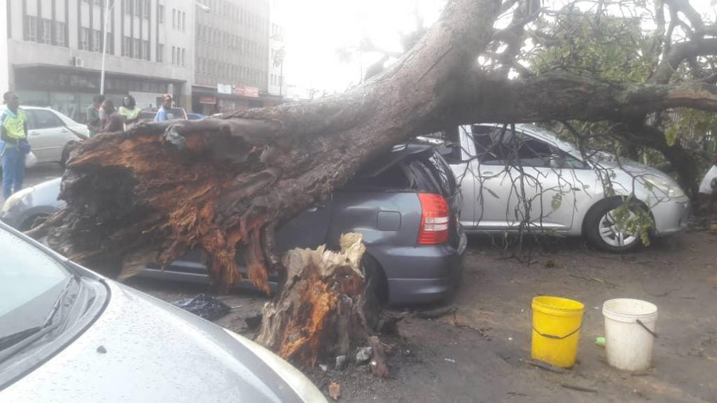 Heavy rains in Zimbabwe leave citizens counting their losses.