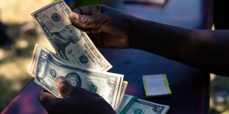 Government declares war on importers buying forex on Black market