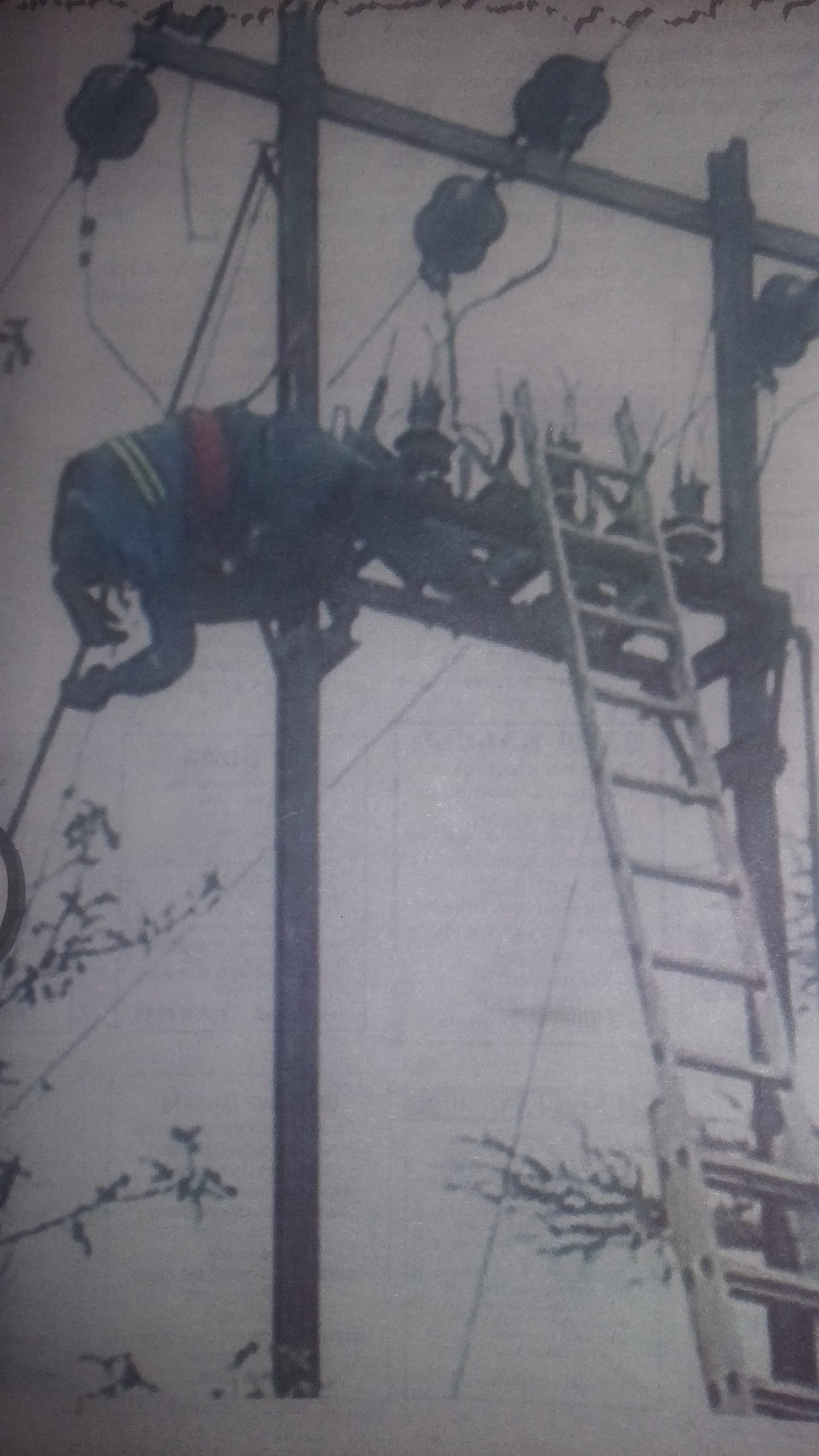 "Unplanned"" ZESA Schedules Kill Worker, Zesa Worker Electrocuted"