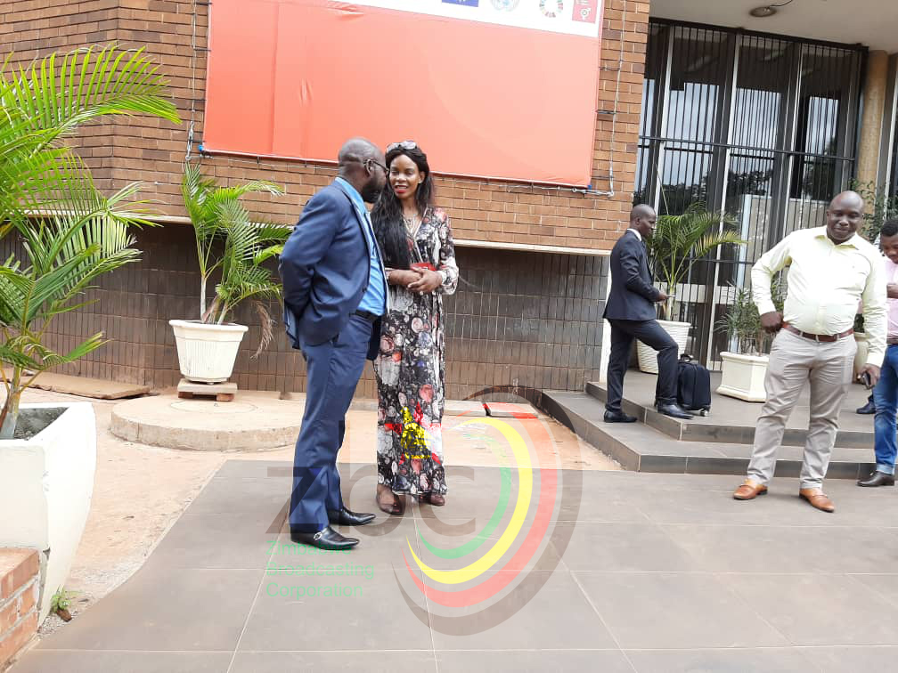 Marry Chiwenga Back In Court