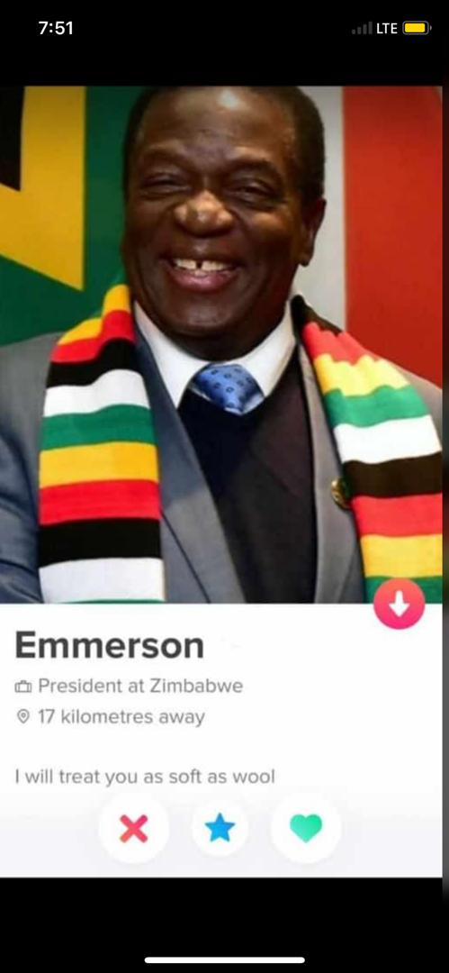 Dating zimbabweans in cape town