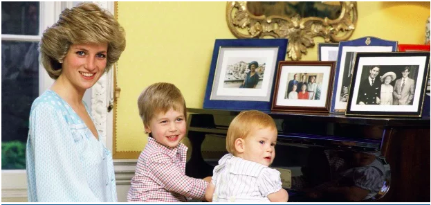 Princess Diana With Prince Harry And Prince William